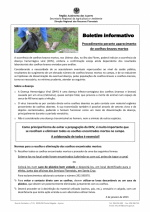 Boletim Informativo - DHV