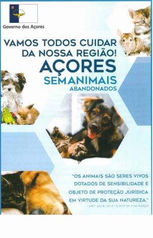 Açores sem animais abandonados